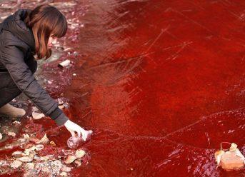 dye industry