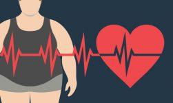 cardiac diabetic pharma products